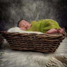 _newborn038